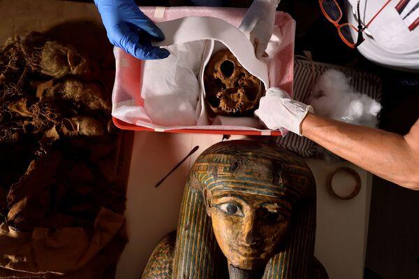 """""""Le mummie sono praticamente un museo biologico, sono come una capsula del tempo"""", ha affermato Sabina Malgora, direttrice del Mummy Project Research. - Sputnik Italia"""