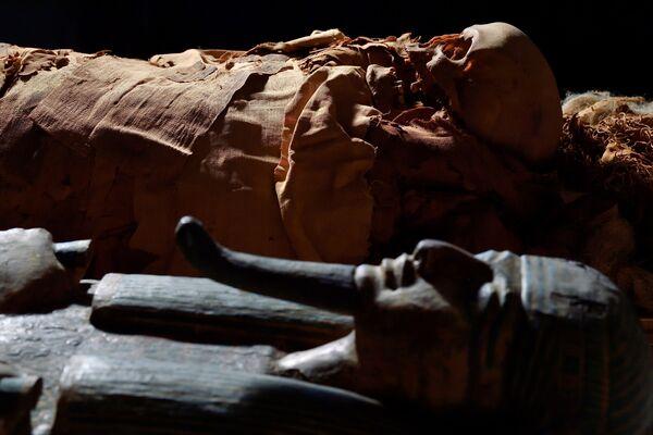 La mummia egizia accanto al suo sarcofago al Museo Civico Archeologico di Bergamo. Il sarcofago aiuta i ricercatori a scoprire le informazioni sul nome della mummia.  - Sputnik Italia
