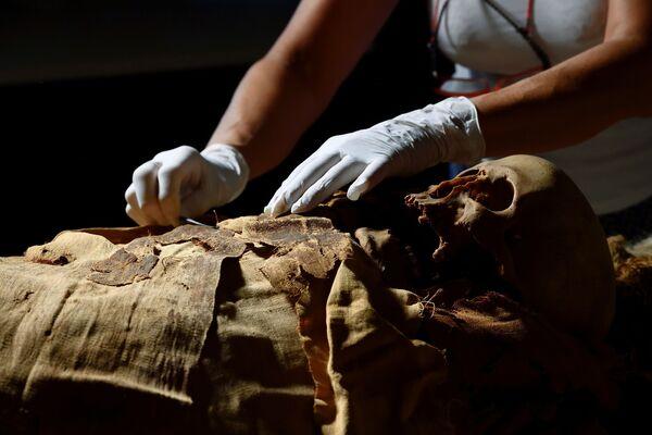 I ricercatori auspicano di ricostruire la vita e la morte del sacerdote egiziano, capire quali tipi di prodotti sono stati usati per mummificare il corpo e far luce in generale sulle tecniche funerarie della sua epoca. - Sputnik Italia