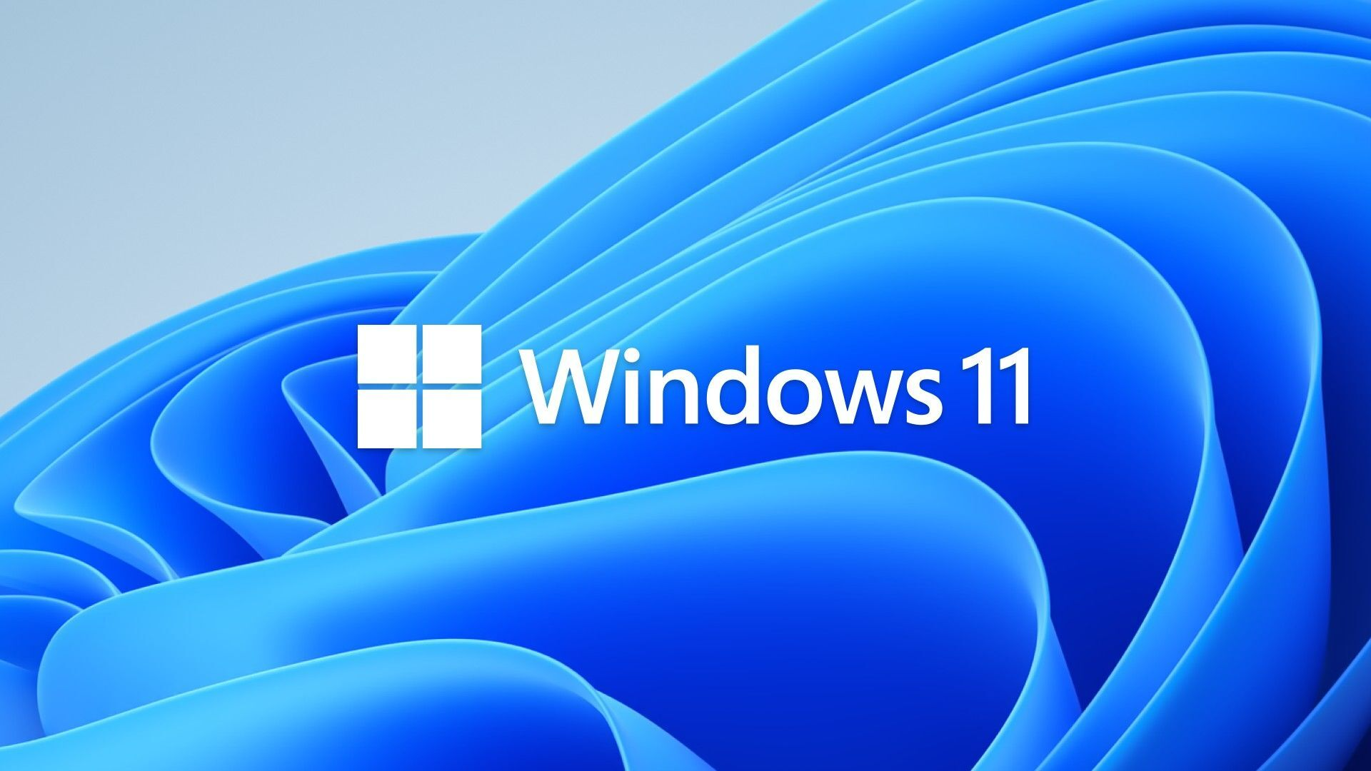 Logo Windows 11 - Sputnik Italia, 1920, 06.07.2021