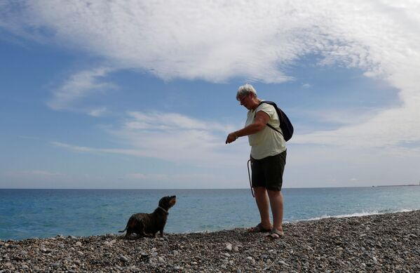 È la seconda spiaggia destinata ai quattro zampe, dopo quella istituita nel 2008 a Carras, all'estremo Ovest della Promenade. - Sputnik Italia