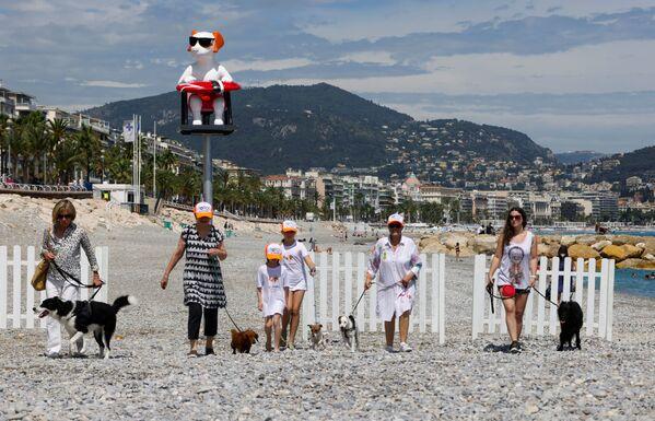 Per mantenere il sito pulito, sono stati posizionati distributori di sacchetti per cani a ciascuna estremità dell'area accanto ai cestini per i rifiuti. - Sputnik Italia