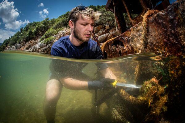 Un volontario raccoglie i resti di un allevamento ittico. - Sputnik Italia