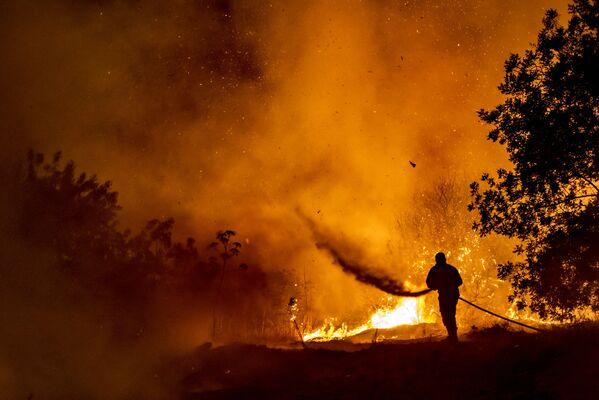 Un vigile del fuoco combatte le fiamme in una foresta sull'isola mediterranea di Cipro, durante la notte del 3 luglio 2021. - Sputnik Italia