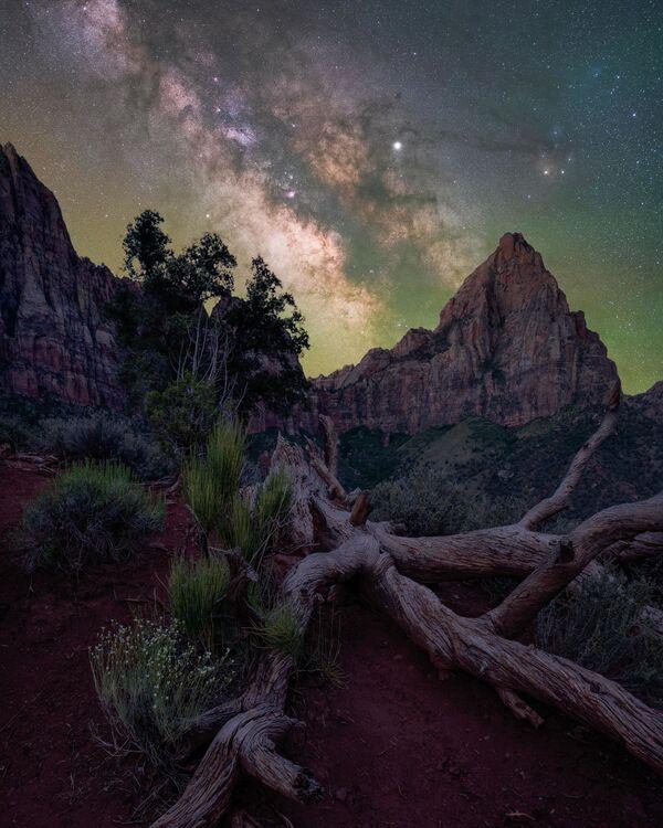 """La foto """"Il guardiano"""" del fotografo Brandt Ryder, che è diventata una delle vincitrici del concorso fotografico """"Milky Way Photographer of the Year"""", la foto scattata nel parco nazionale di Zion, Utah, USA - Sputnik Italia"""