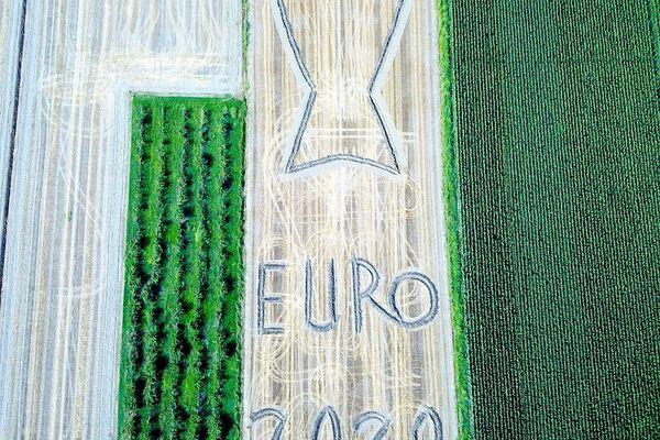 Omaggio agli Azzurri di Dario Gambarin - Sputnik Italia
