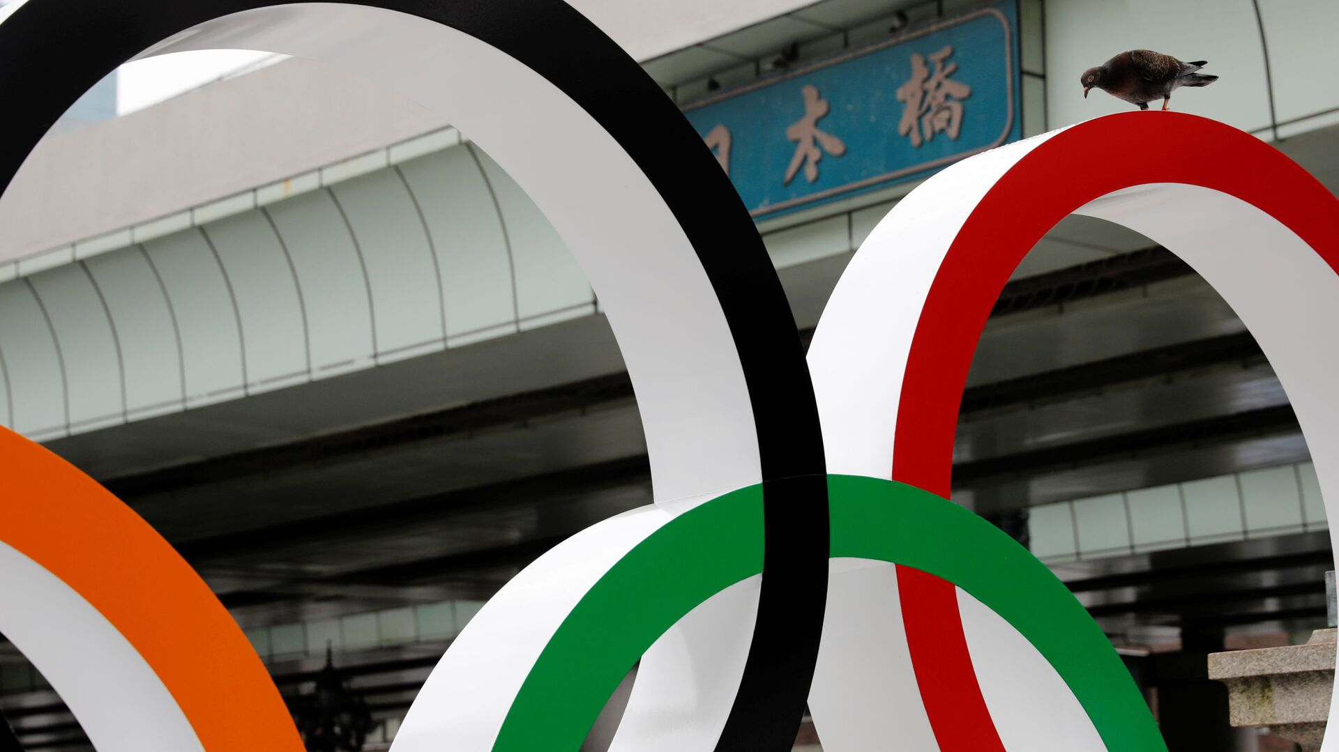Голубь на Олимпийских кольцах в Токио  - Sputnik Italia, 1920, 18.07.2021