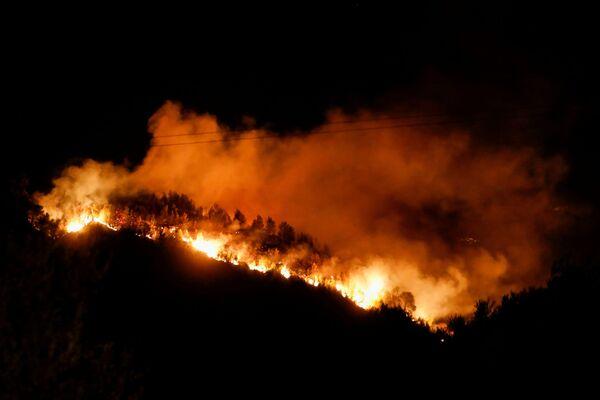 Le fiamme degli incendi vicino al villaggio di Ziria, vicino a Patrasso, in Grecia, 31 luglio 2021. - Sputnik Italia