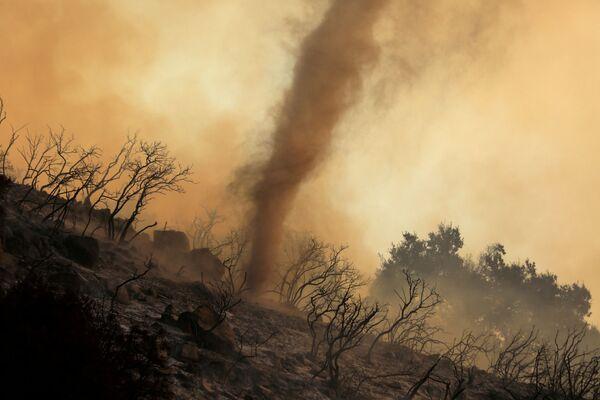 Un mulinello di cenere calda e braci che si muove attraverso l'incendio soprannominato Cave Fire, negli Stati Uniti, il 26 novembre 2019. - Sputnik Italia