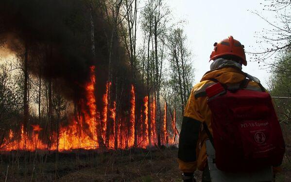 Alcuni vigili del fuoco organizzano degli incendi controllati nel tentativo di domare le fiamme, in Jacuzia, Russia, nel 2021. - Sputnik Italia