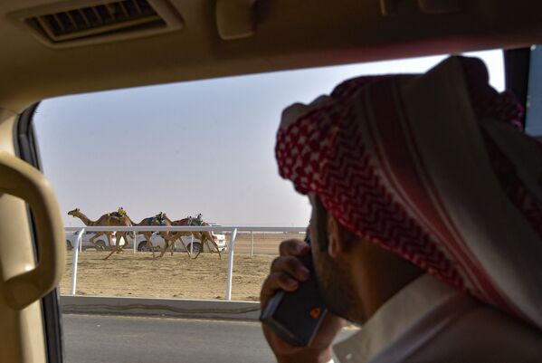 Il festival mira a promuovere l'eredità culturale delle corse di cammelli nel paese, sostenere il turismo, contribuire allo sviluppo economico del Regno, favorire la partecipazione della comunità locale e ad affermare la profondità culturale dell'Arabia Saudita.  - Sputnik Italia
