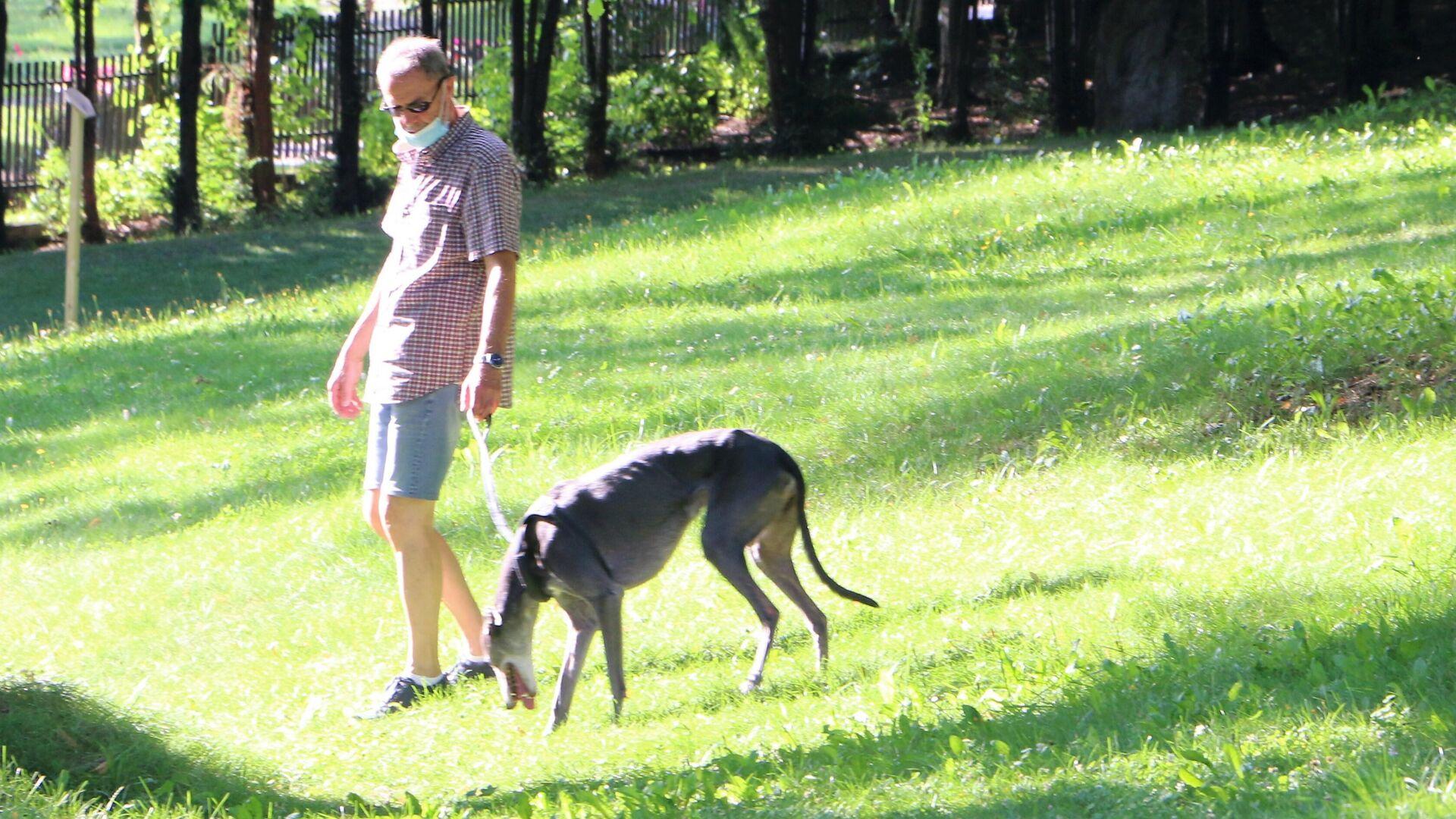 Un cane con un padrone fanno un giro in un parco in Italia - Sputnik Italia, 1920, 02.09.2021