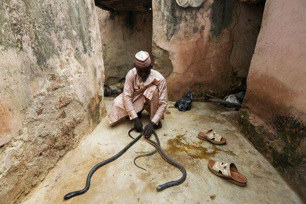 Yaya Kawu vive con due serpenti nella sua casa a Rano, in Nigeria. Ha anche una iena. - Sputnik Italia