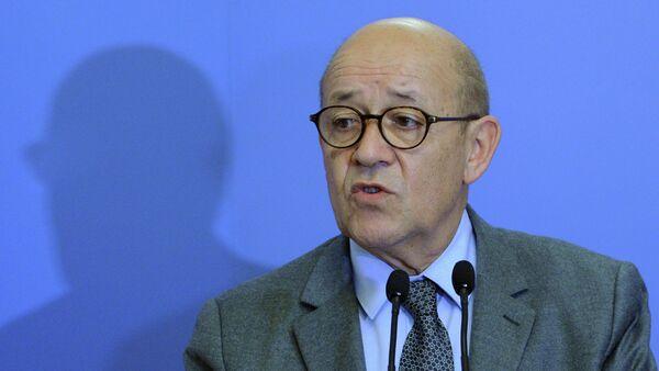 Il ministro della Difesa francese Jean-Yves Le Drian - Sputnik Italia