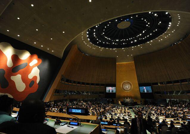 Assemblea generale delle Nazioni Unite (foto d'archivio)