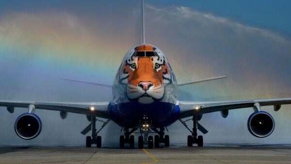 """Un Boeing 747-400 della compagnia aerea russa """"Transaero"""" con un immagine di una tigre. - Sputnik Italia"""