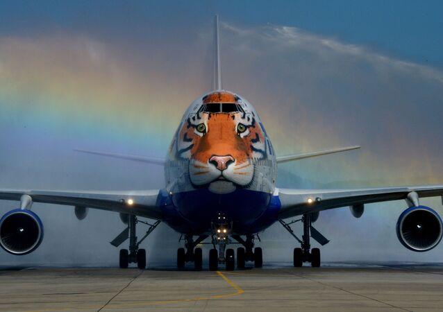 """Un Boeing 747-400 della compagnia aerea russa """"Transaero"""" con un immagine di una tigre."""