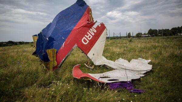 Resti del Boeing malese nella zona di Shaktersk - Sputnik Italia