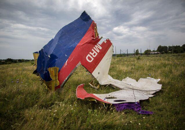 Resti del Boeing malese nella zona di Shaktersk (Donbass)