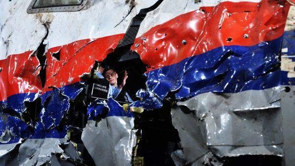 Una parte del Airbus, volo MH17, abbattuto - Sputnik Italia