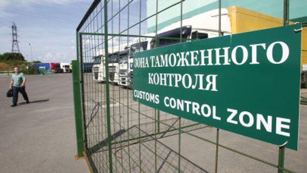 Dogana all'aeroporto moscovita di Domodedovo - Sputnik Italia