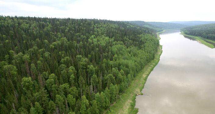La tundra siberiana