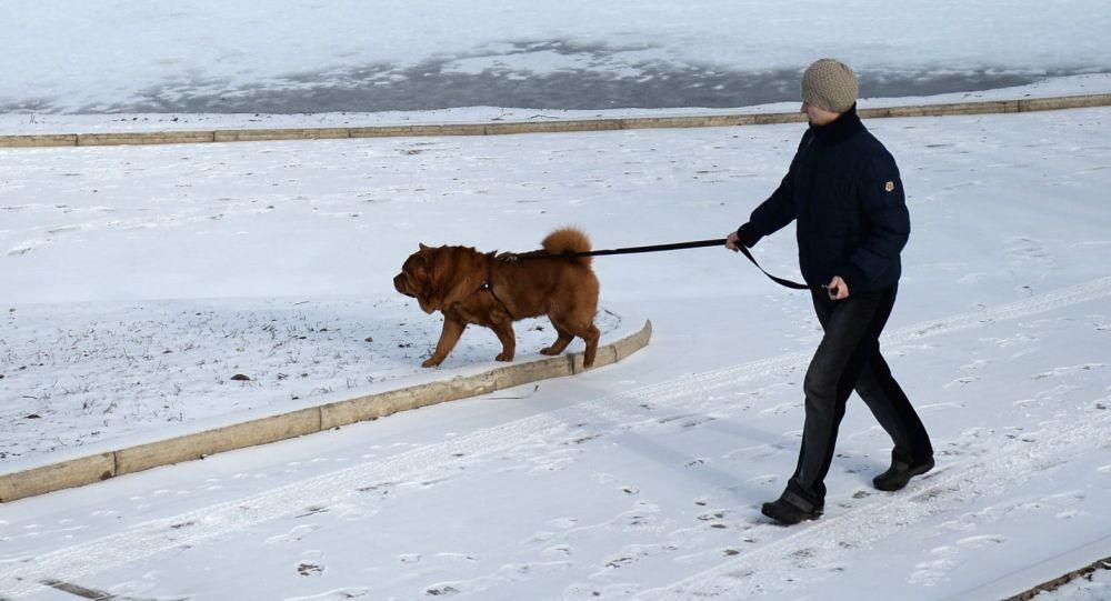 A Mosca la neve ha rifatto la sua comparsa nel primo giorno di primavera