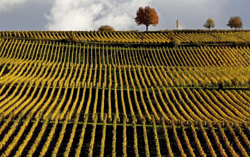 Un paesaggio autunnale in Germania.