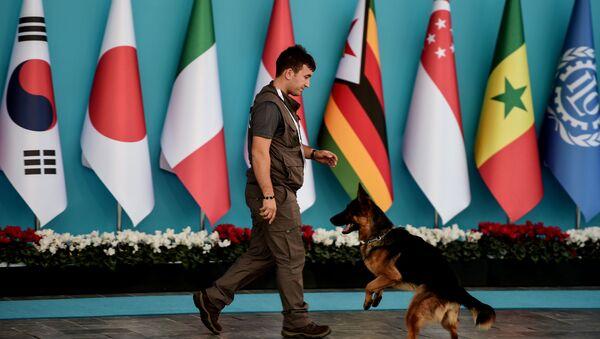 Сотрудник полиции следит за порядком во время саммита G20 в Турции - Sputnik Italia