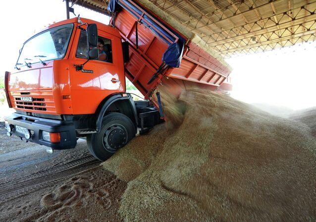 Produzione di grano