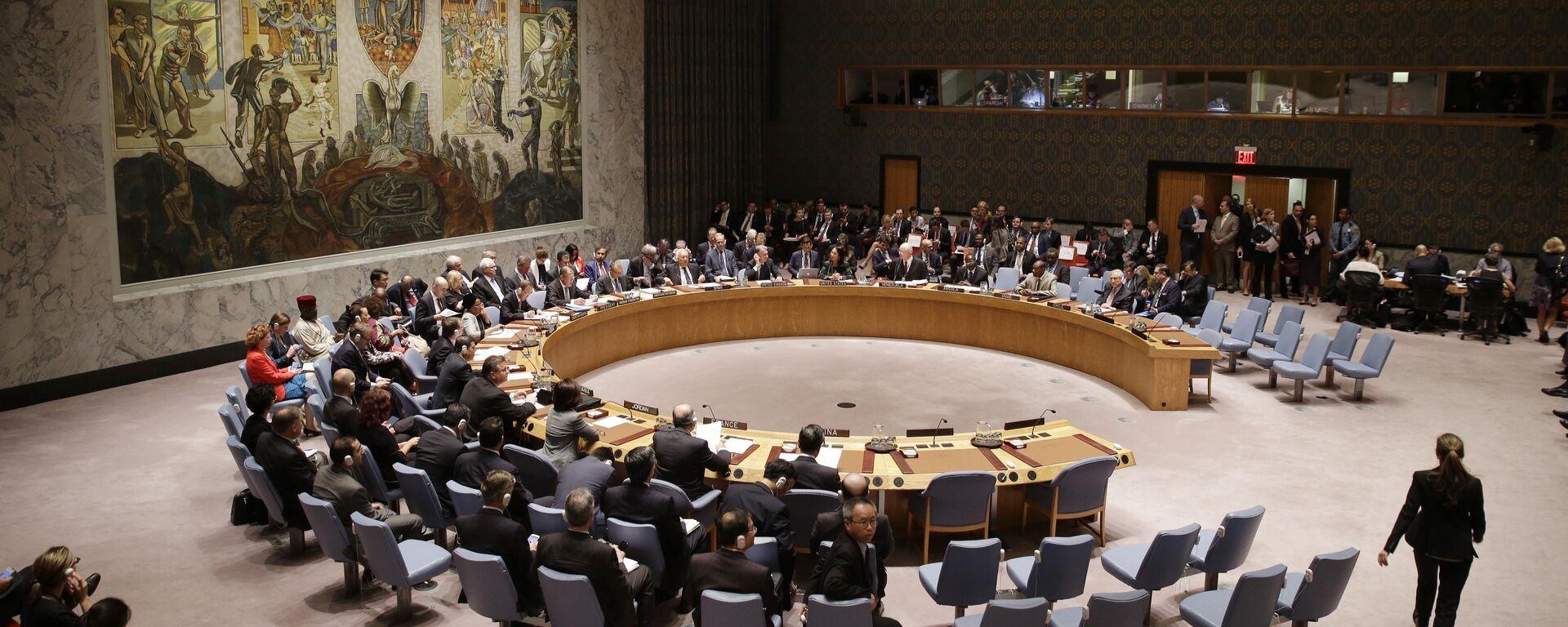 Consiglio di sicurezza dell'ONU - Sputnik Italia, 1920, 30.08.2021