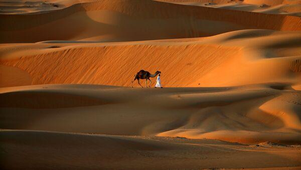Un uomo cammina con il cammello lungo il deserto nei pressi di Abu Dhabi - Sputnik Italia