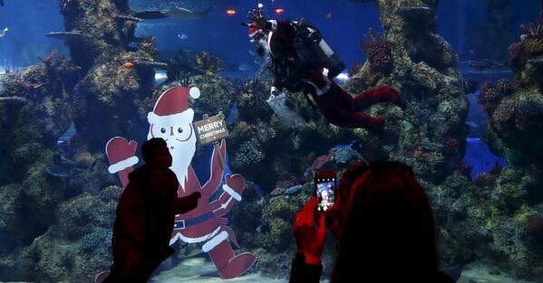 Il Capodanno subacqueo. - Sputnik Italia