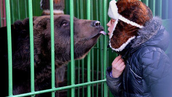 Un orso scambia tenerezze con una persona - Sputnik Italia