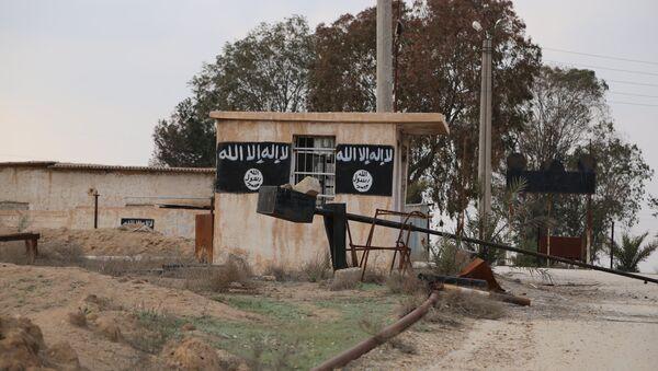 Uno degli edifici del Daesh - Sputnik Italia