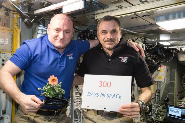 L'astronauta americano Scott Kelly e il cosmonauta russo Mikhail Kornienko celebrano il 300º giorno nello spazio il 21 gennaio, 2016. - Sputnik Italia