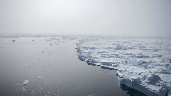 Mare di Barents - Sputnik Italia