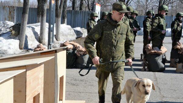 Sminatori russi in partenza per la Siria ( Palmira ) - Sputnik Italia