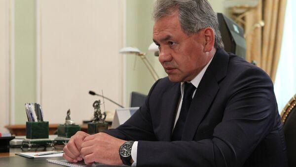 Sergei Shoigu - Sputnik Italia