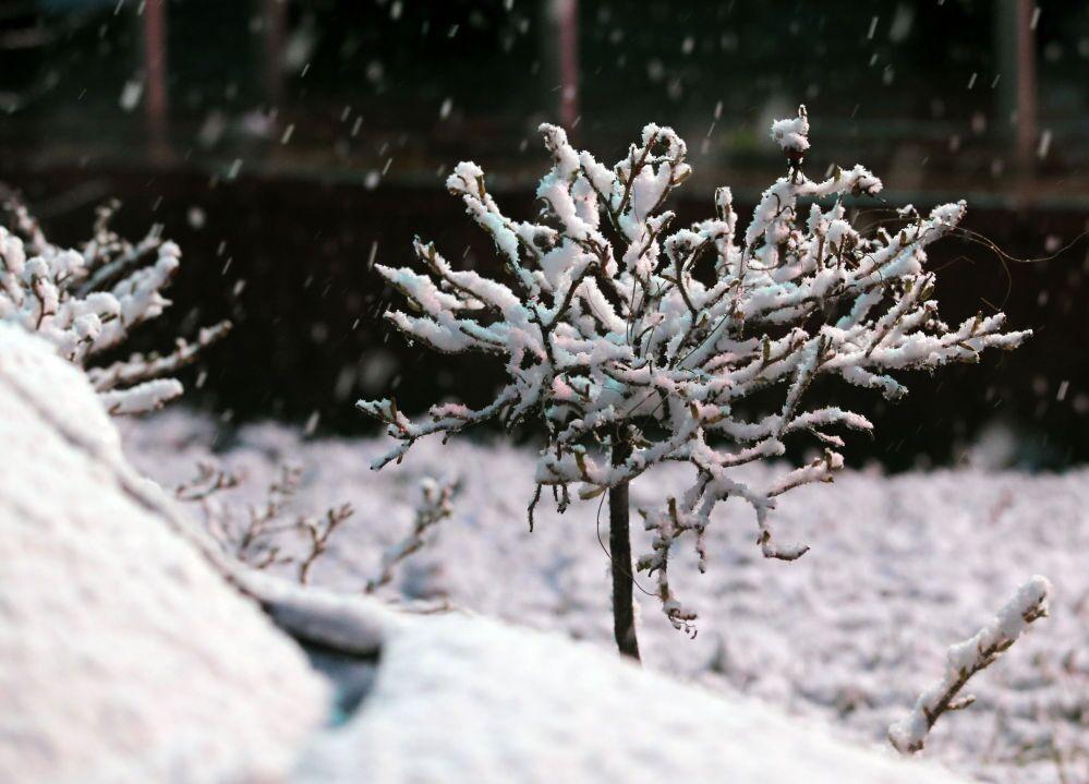 Secondo i metereologi la primavera dovrebbe tornare sulla Capitale russa ai primi di maggio