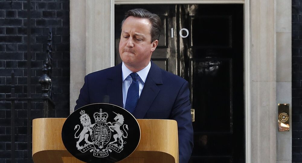 David Cameron a Downing Street dopo Brexit