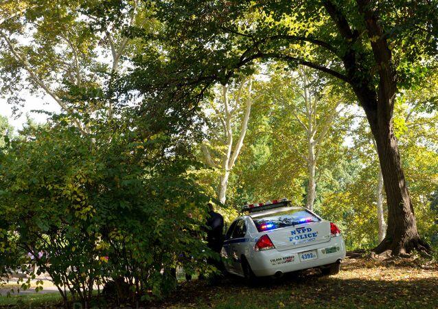 New York City - Central Park police car