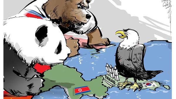 Russia e Cina possono creare uno scudo missilistico congiunto - Sputnik Italia