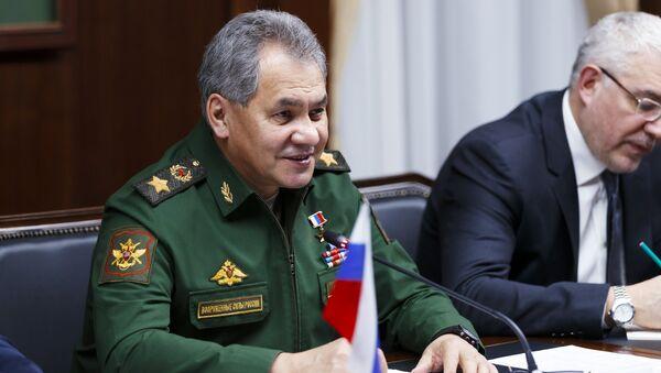 Ministro della Difesa russo Sergei Shoigu - Sputnik Italia