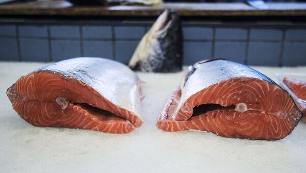 Salmone - Sputnik Italia