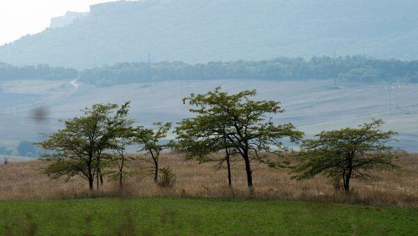 Nelle vicinanze  del villaggio Konstantinovka, Crimea. - Sputnik Italia