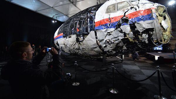 Macerie del volo MH17 - Sputnik Italia