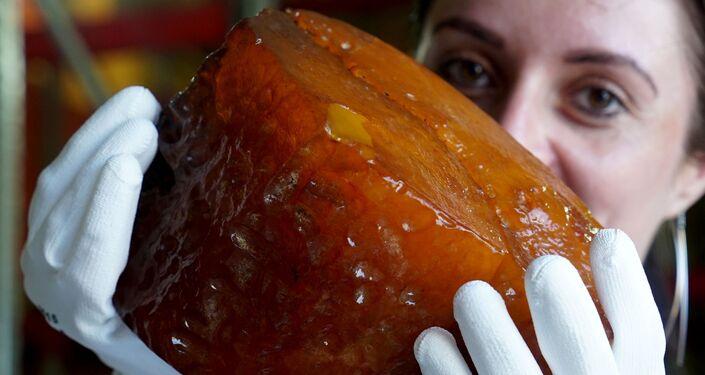 Una pepita di ambra da 2,7 chili trovata a Kaliningrad.