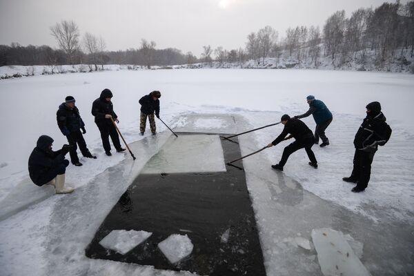 Le foche di Novosibirsk aprono la stagione - Sputnik Italia
