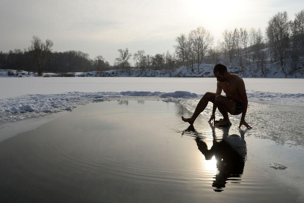 Le foche di Novosibirsk aprono la stagione